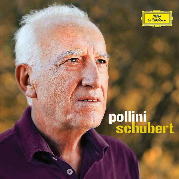 Schubert Complete Recordings: Pollini,Maurizio