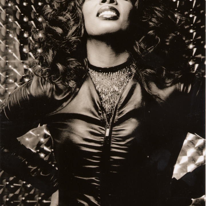 Donna Summer 2013