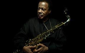 Wayne Shorter, Saxophon-Gigant Wayne Shorter live in Deutschland