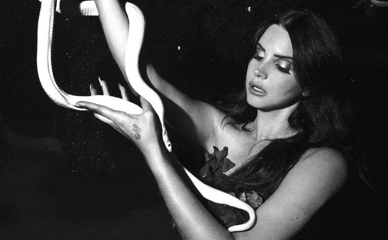 Lana Del Rey, Tropico Teaser