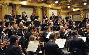 Diverse Künstler, Prächtige Jubiläumsedition – Wiener Philharmoniker feiern 175. Geburtstag