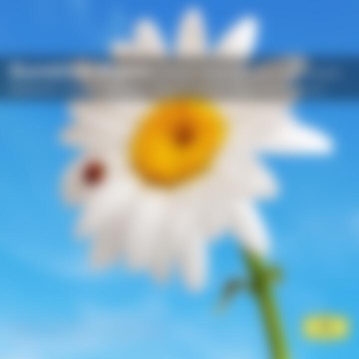 Sunshine Piano - Klaviermusik die glücklich macht: Argerich,M./Barenboim,D./Kissin,Y./Lang Lang