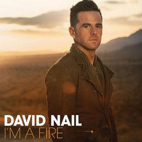 David Nail, I'm A Fire, 00602537577422