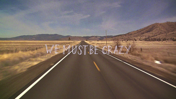 We Must Be Crazy (Lyric Video)