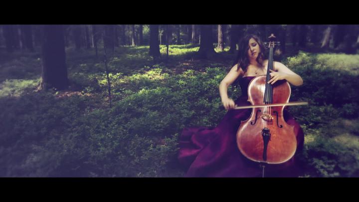 Cellokonzert h-moll - I. Allegro (Ausschnitt)