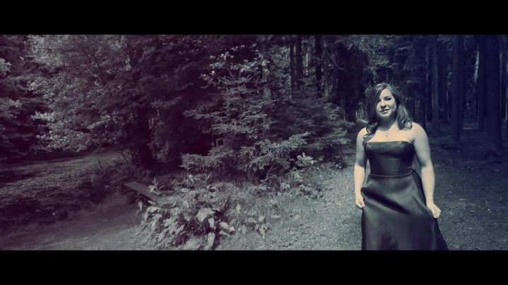 Silent Woods (Ausschnitt)