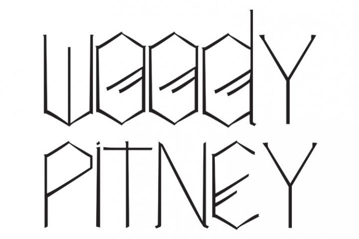 Woody Pintey Logo Webgrafik