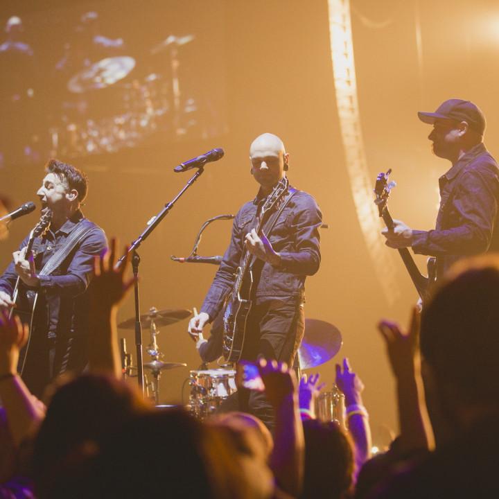 Hedley Live 7