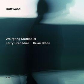 Wolfgang Muthspiel, Driftwood, 00602537564002