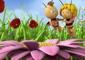 Die Biene Maja, Ich hab 'nen Freund