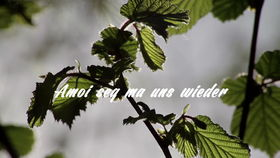Andreas Gabalier, Amoi seg' ma uns wieder (Lyric Video)