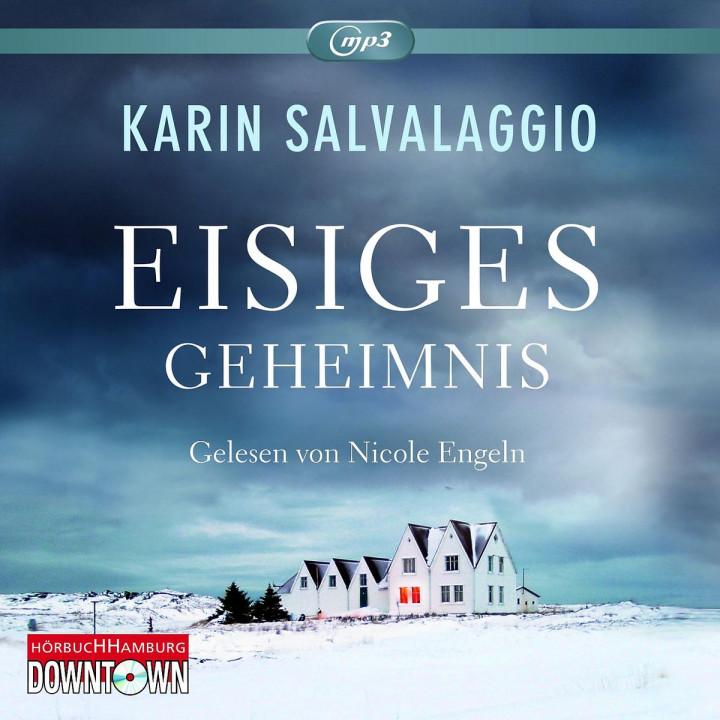 Karin Salvalaggio: Eisiges Geheimnis