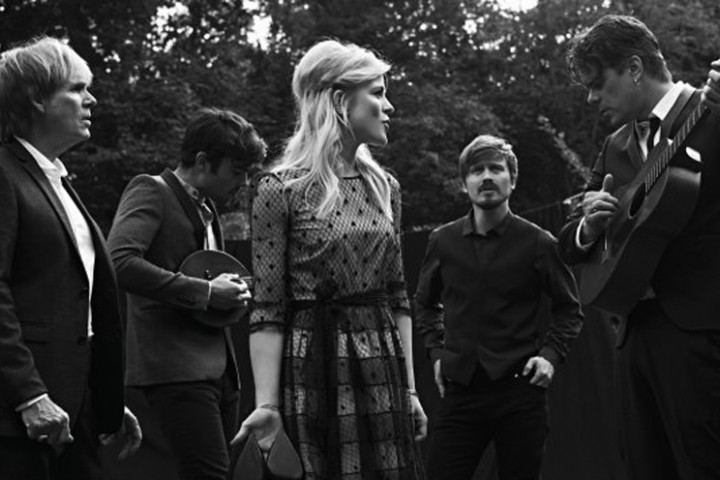The Common Linnets Foto 2 2014