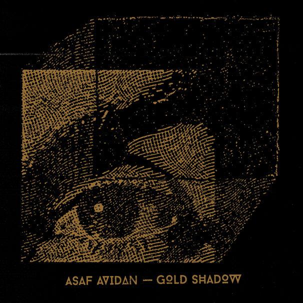 Asaf Avidan, Asaf Avidan Gold Shadow Albumcover 2014
