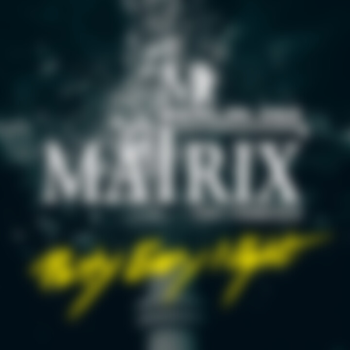 Matrix Feat. Francisco - Party Every Night - Single