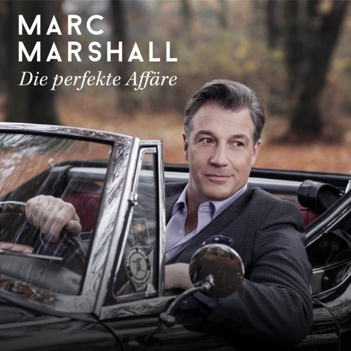 Marc Marshall Die perfekte Affäre