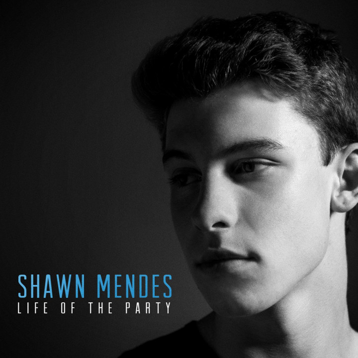 Shawn Mendes Life Of The Party