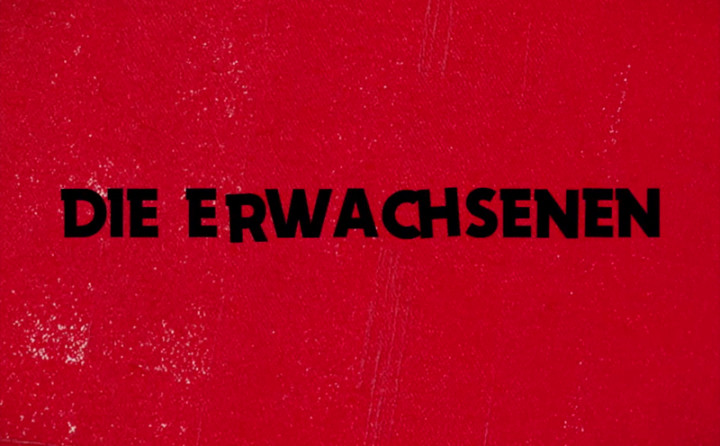 Die Erwachsenen (Lyric Video)