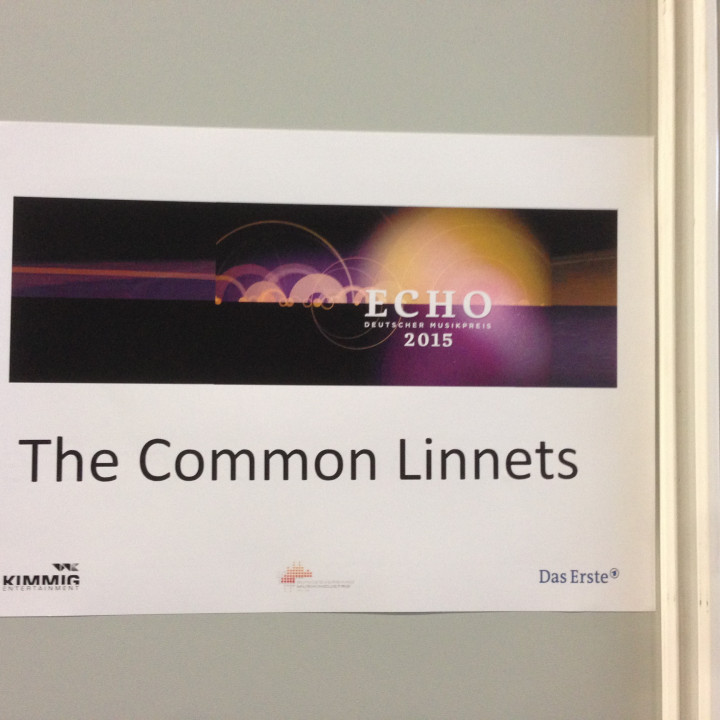 The Common Linnets Echo 2015