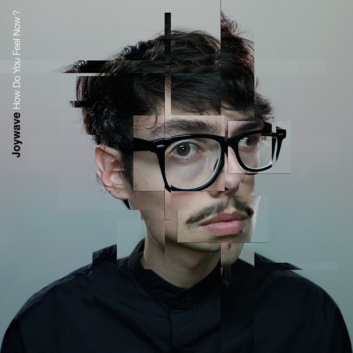 Joywave How Do You Feel Now Cover