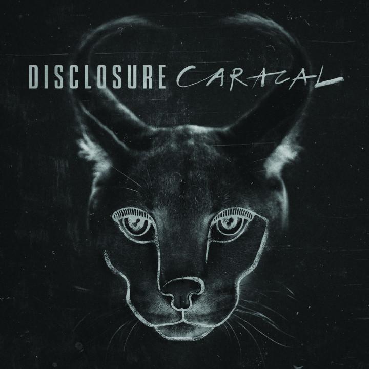 Disclosure Caracal