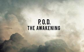 P.O.D., P.O.D. - THE AWAKENING