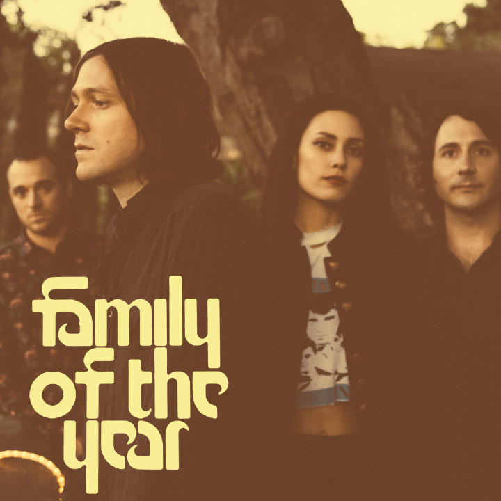 Family Of The Year - Album - 2015