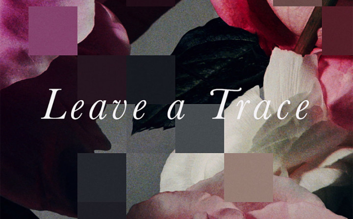Leave a Trace (Lyric Video)