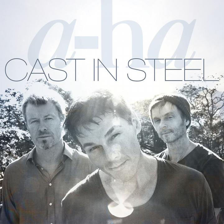 Cast In Steel