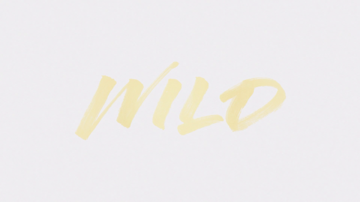 Wild (Lyric Video)