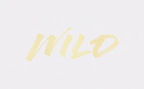 Troye Sivan, Hier reinschauen und textsicher werden: Troye Sivan präsentiert das Lyric Video zum Song Wild