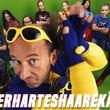 Tom Lehel, Tom Lehel_HammerHartesHaareKämmen