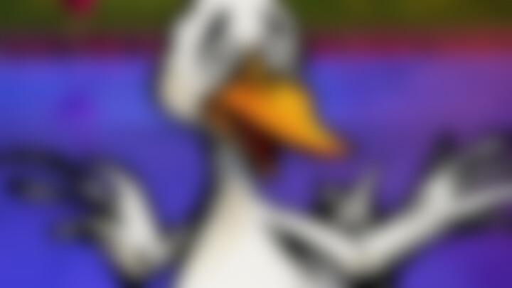 Videoepisode 5: Die Ente