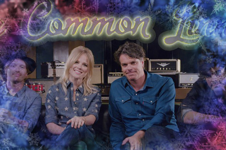 The Common Linnets 2015