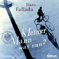 Hans Fallada, Kleiner Mann - was nun?
