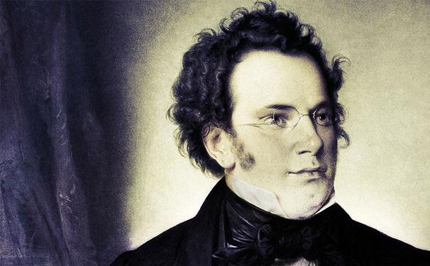 Diverse Künstler, Schuberts Schätze - Die schönsten Kompositionen in einer neuen Edition