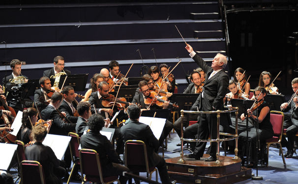 Daniel Barenboim, Musikalische Friedensbotschaft - Das West-Eastern Divan Orchestra wird zum UN-Botschafter für Kultur ernannt