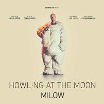 Milow, Milow erreicht Goldstatus mit seiner Hitsingle Howling at the Moon und geht dieses Jahr auf Deutschlandtour