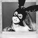 Ariana Grande, Ariana Grande 2016