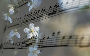Klassik zu Ostern, Musikalischer Osterspaziergang: Die schönsten Alben für das ...