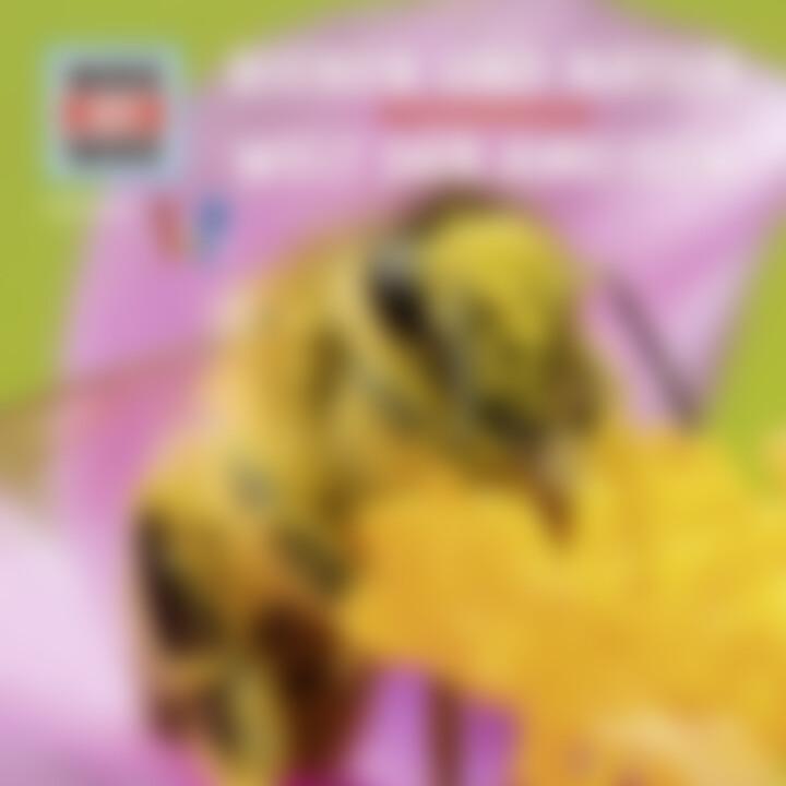 Folge 59: Bienen und Natur / Welt der Ameisen