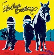 The Avett Brothers, The Avett Brothers veröffentlichen ihr neues Album True Sadness