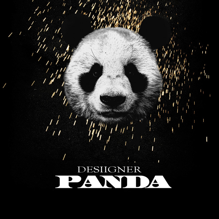 Desiigner Panda cover