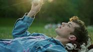 Troye Sivan, WILD feat. Alessia Cara