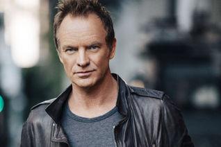 Sting, Sting