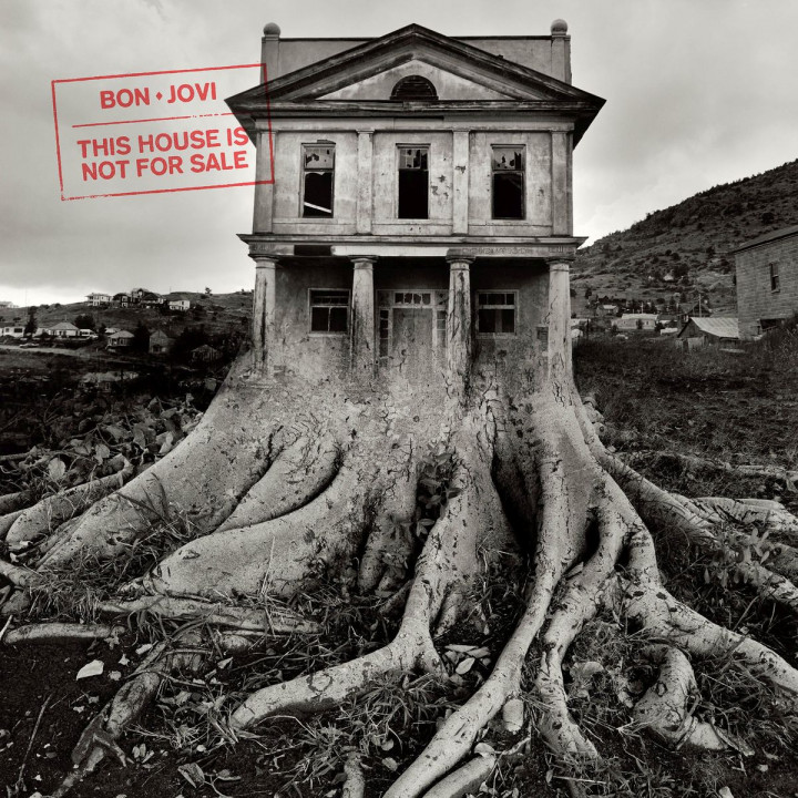 This House Is Not For Sale (Vinyl)