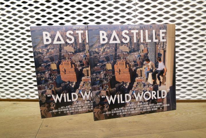 Wild World Vinyl