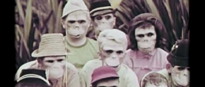 Der Affe und ich (Lyric Video)