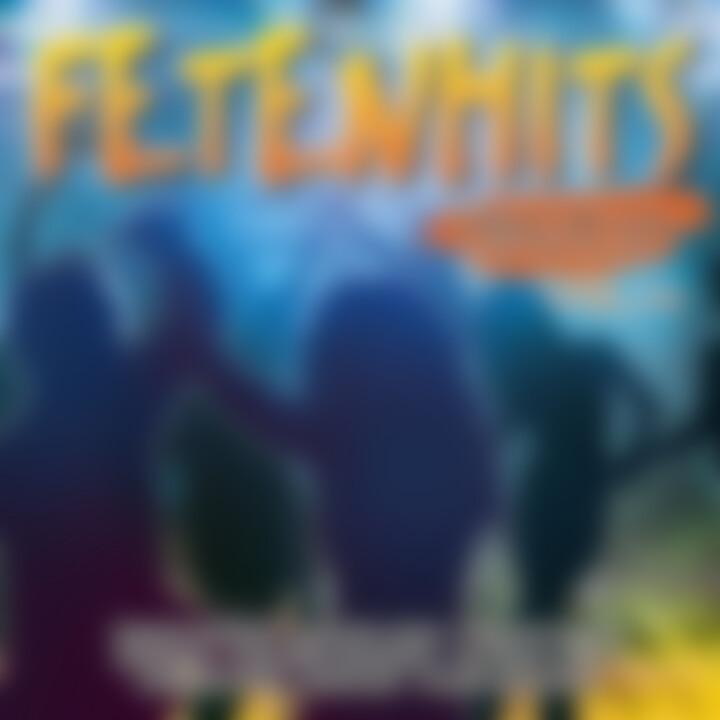 Fetenhits Discofox - Die Deutsche, Vol. 4
