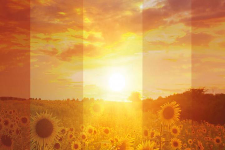 Deine Sonne bleibt